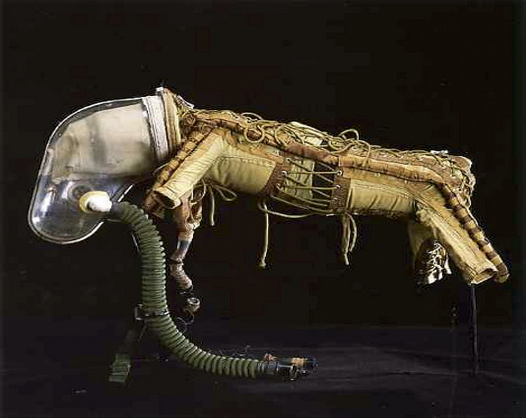 dog in space suit - photo #21